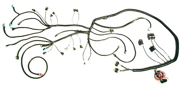 TPI86 89 tpi wire harness Wiring Harness Wiring- Diagram at bayanpartner.co